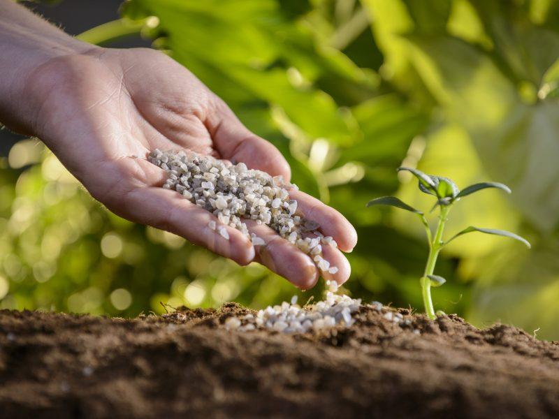 Polyhalite fertilizer