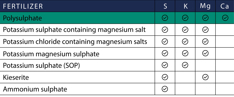 Polysulphate fertilizer