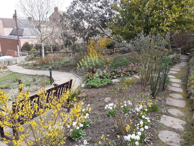 This will soon be a riot of colour, butterflies and bees.